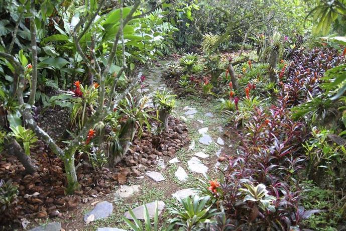 El jardin de los colibries pereira compare deals - El jardin de pedraza ...