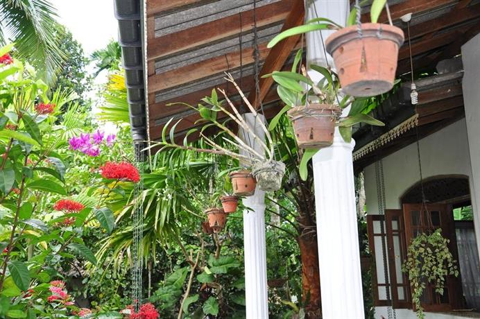 Homestay Orchid