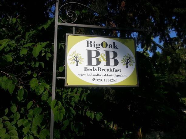 Bed & Breakfast Big Oak