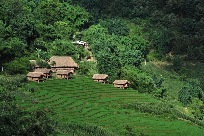 Eco Palms House - Sapa Retreat