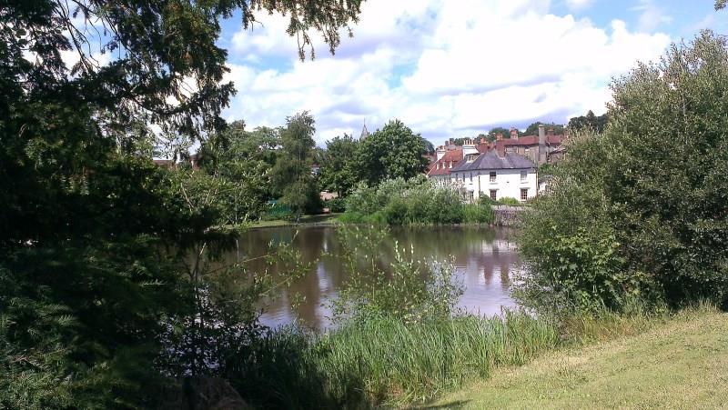 Homestay in Midhurst near Cowdray House