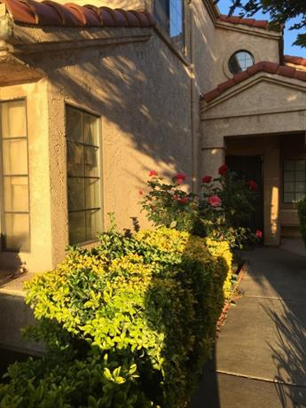 Homestay in Lodi near Lodi Arch