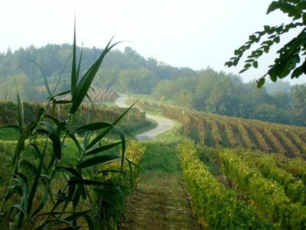 Homestay in Vinchio near Alto Monferrato