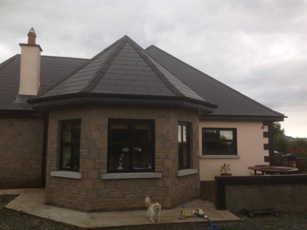 Homestay in Enniscorthy near Enniscorthy Castle