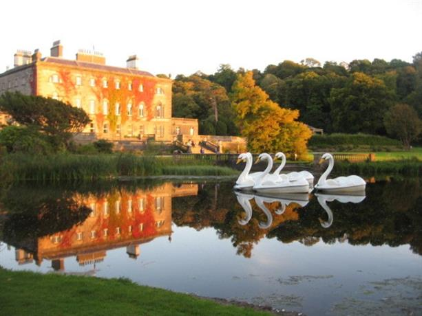 Homestay in Limerick near River Shannon