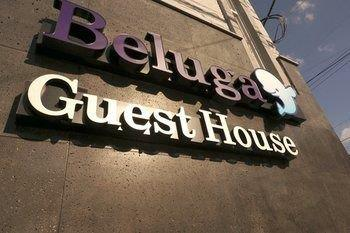 Beluga Guest House - Hostel