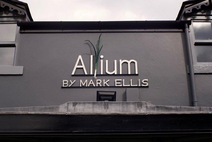 Allium by Mark Ellis