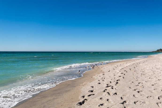 Inn At The Beach Venice Florida Reviews