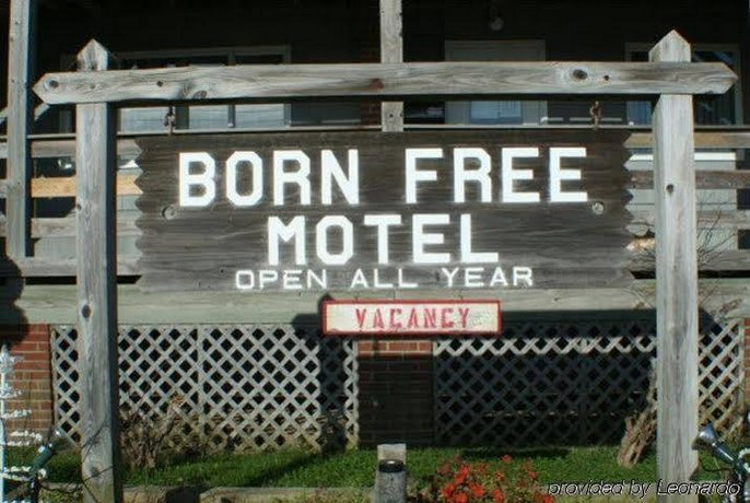 Born Free Motel