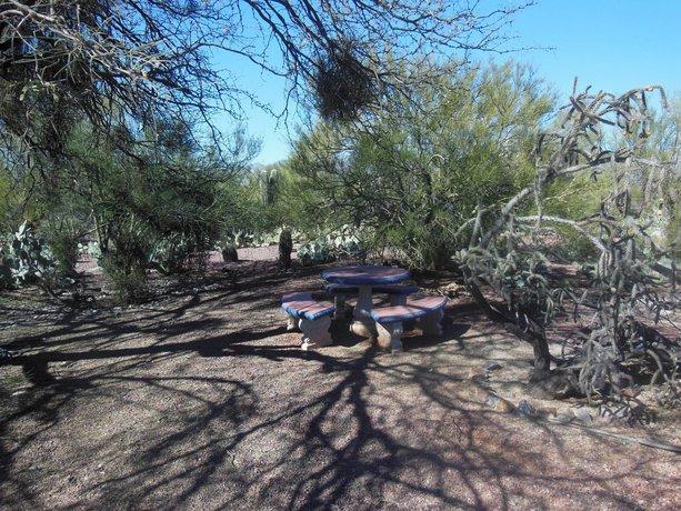The Suncatcher Fine Country Inn Tucson