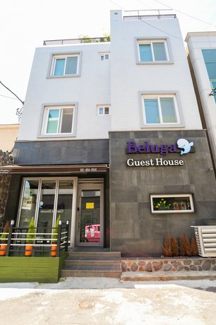 Beluga Guest House - Hostel