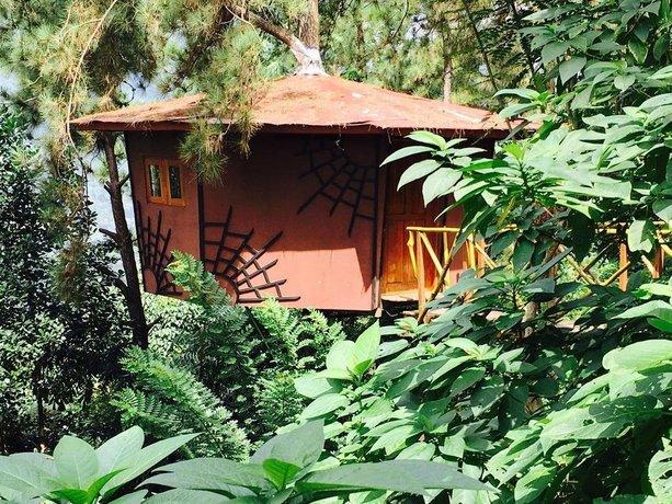 The Tree House Kitulgala