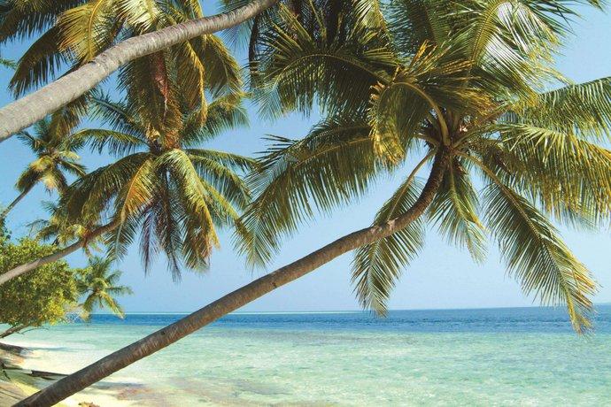 Biyadhoo Island Resort Biyaadhoo Compare Deals