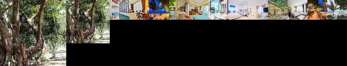 Vongdeuan Resort