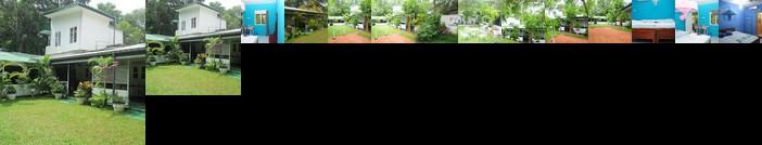 Levi's Tourist - Anuradhapura