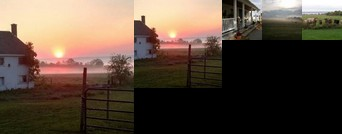 Cayuga Morning Star Bed and Breakfast