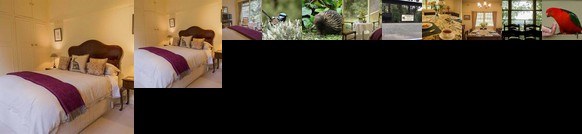 Billy Buttons Bed and Breakfast