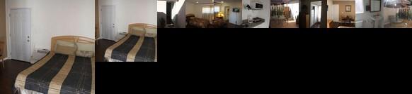Comfy Studio Suite