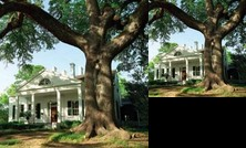 Twin Oaks Bed and Breakfast
