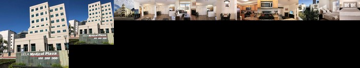 Brand New GLENDON Apt UCLA in Los Angeles 22