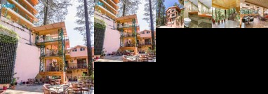 1 Br Boutique Stay In Near Jakhu Temple Shimla Bb69 By Guesthouser