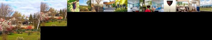 Grey Ridge Vineyard Experience