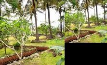 Baigo Garden Homestay